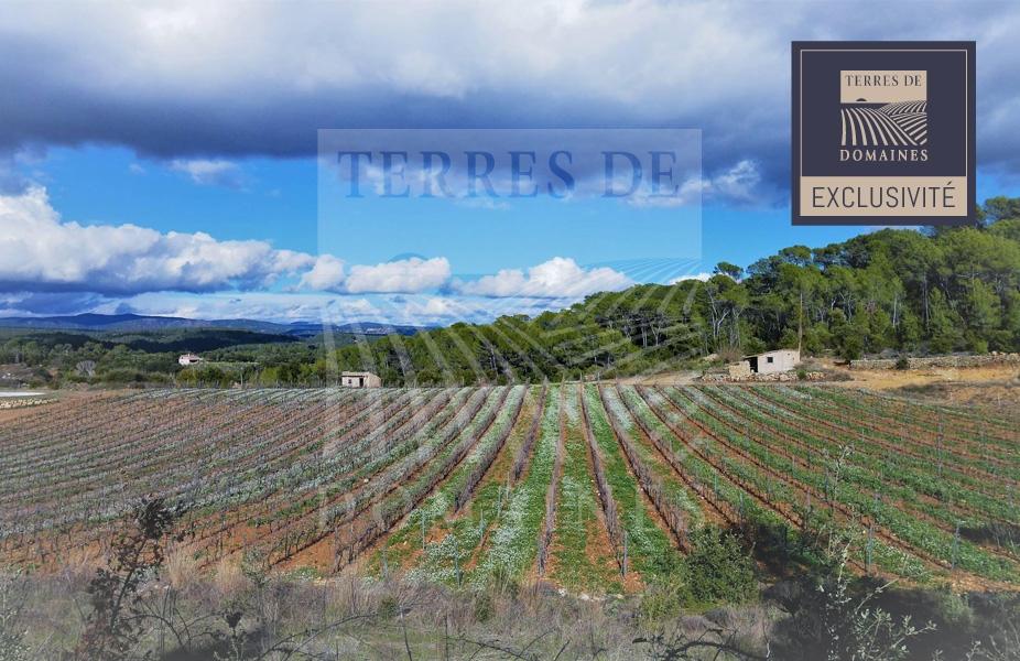Exclusivité – Domaine viticole de 23 hectares d'un seul tenant – Ref: 1917/023