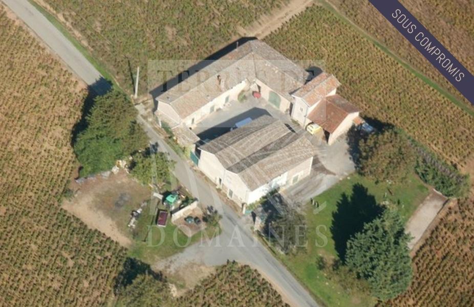 Domaine viticole de 7 hectares en AOP Brouilly