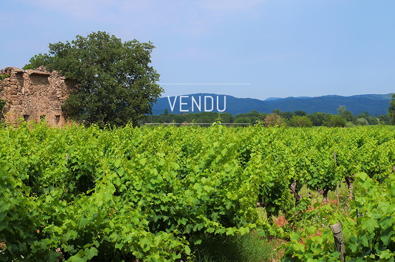 EXCLUSIVITY – A bucolic field of Provence – Ref : 1917/027