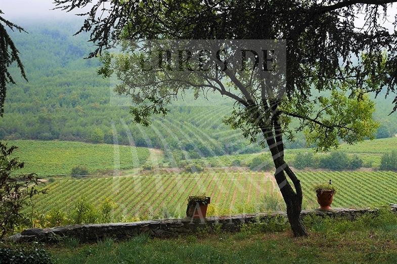 Un Domaine historique en Provence – Ref : P0075