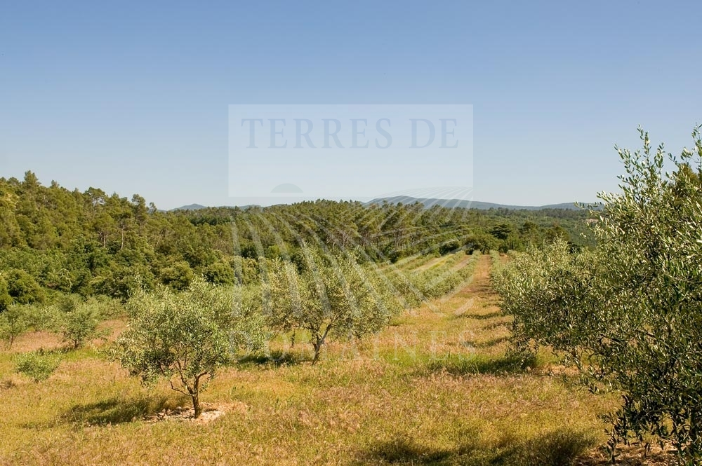 An emblematic estate of Provence – Ref 1917/17