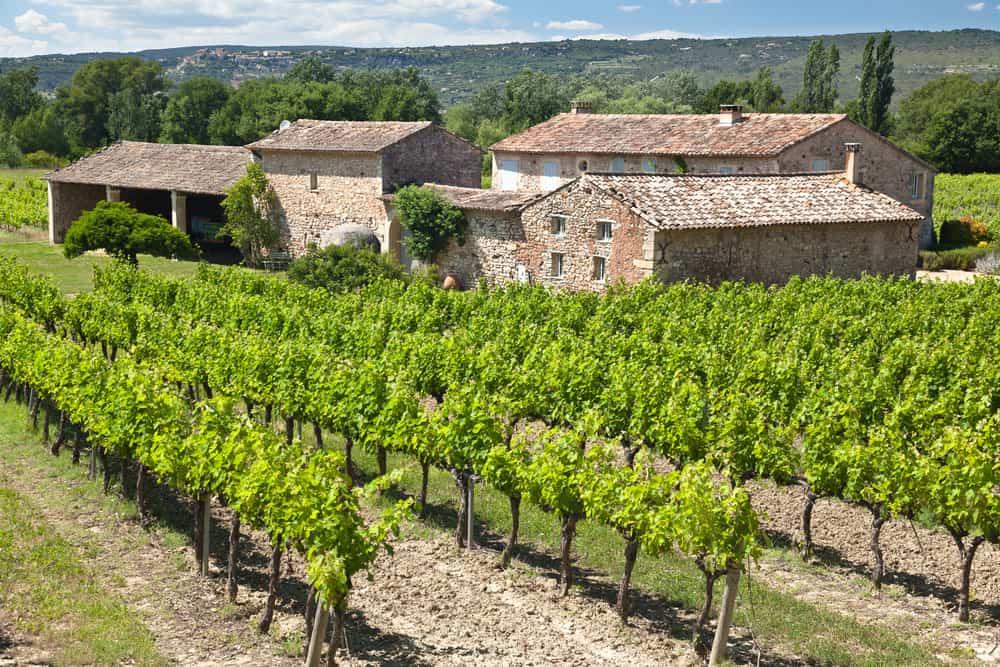 domaine viticole provence opportunites