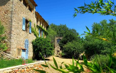 Wine estate of 36 hectares in one piece – Ref: 1917/021