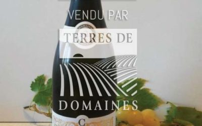 Prestigious domain in AOP Villages and 1er Cru spread over the 3 coasts