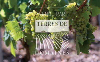 AOP Villages Côte de Beaune, 1er cru Côte Chalonnaise