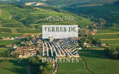 Domaine 4 ha in AOP Beaune, Beaune 1er cru Pommard Monthelie