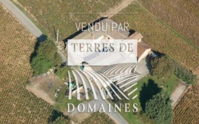 7 hectare vineyard in AOP Brouilly