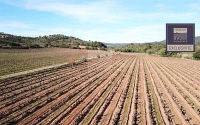 Littoral Varois Domain 100% irrigated, 100% PDO – Ref P127