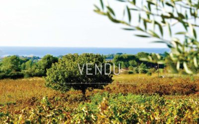 Exclusivity – Lands to plant in the Bandol appellation area – Ref : 1917/031
