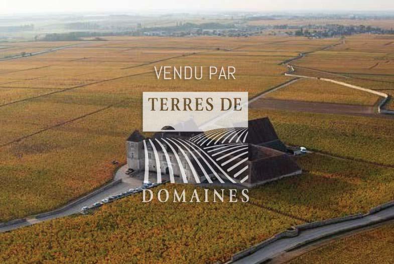 Magnificient domain in Côtes de nuit of 6 ha of vines with plots of Grands Crus (Clos Vougeot, Bonnes Mares)